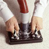 stain odor removal