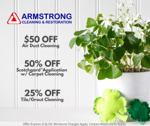 march cleaning specials